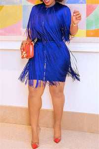 Plus Size Tassel Zipper Dress - ezcute