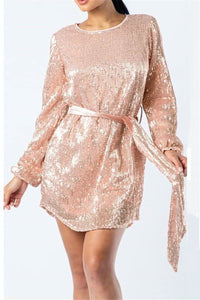 Sequins Splicing Sheer Dress With Belt - ezcute