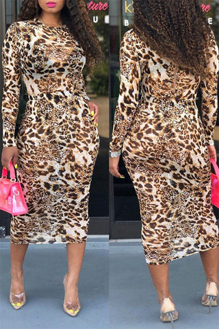 Leopard Printed Net Yarn Dress