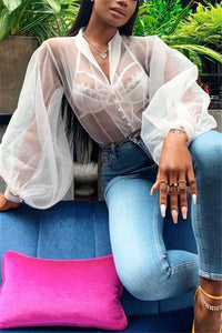 Lantern Sleeve Sheer Chiffon Shirt