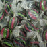 Liquorice & Aniseed : 200g - Liquorice and Aniseed Flavoured Hard Boiled Sweets