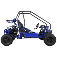110 Youth Size Go-Kart