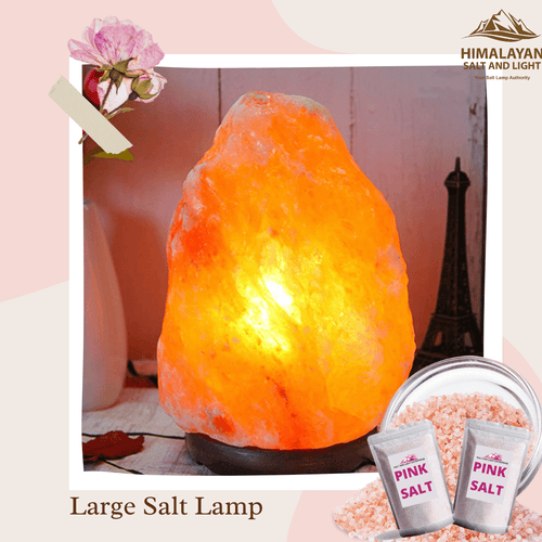 Natural Large Lamp