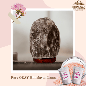 Rare Gray Salt Lamp Mini