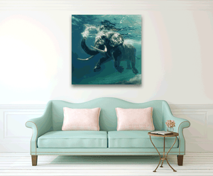 African Elephant 4 - Gallery Canvas w/ COA (Various Sizes)