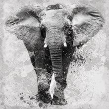 Load image into Gallery viewer, Elephant on canvas