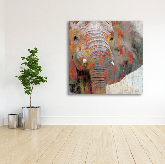 African Elephant 2 - Gallery Wrap Canvas w/ COA (Various Sizes)