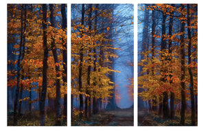 Enchanted Forest - Gallery Wrap Canvas w/ COA (Various Sizes)