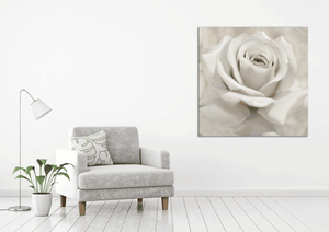 Virgin Rose - Gallery Wrap Canvas w/ COA (Various Sizes)