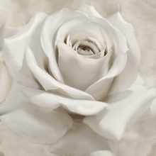 Load image into Gallery viewer, White Rose on canvas