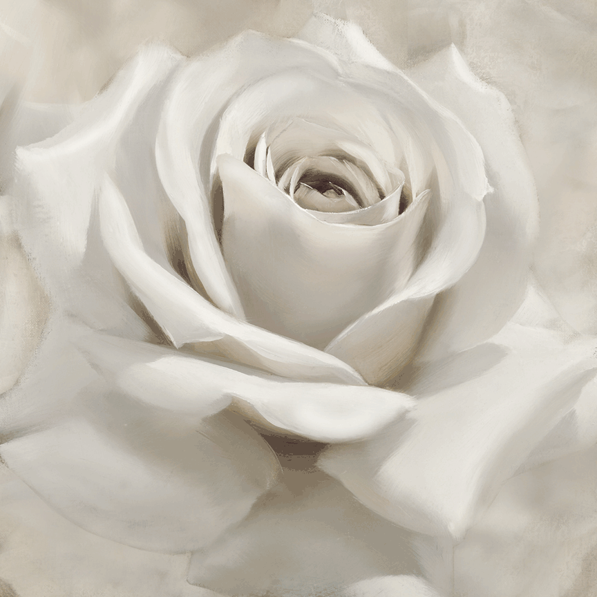 White Rose on canvas
