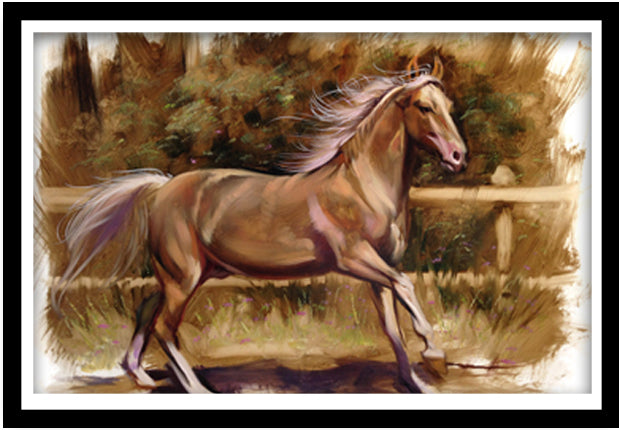 Spanish Horse  - Gallery Wrap Canvas w/ COA (Various Sizes)