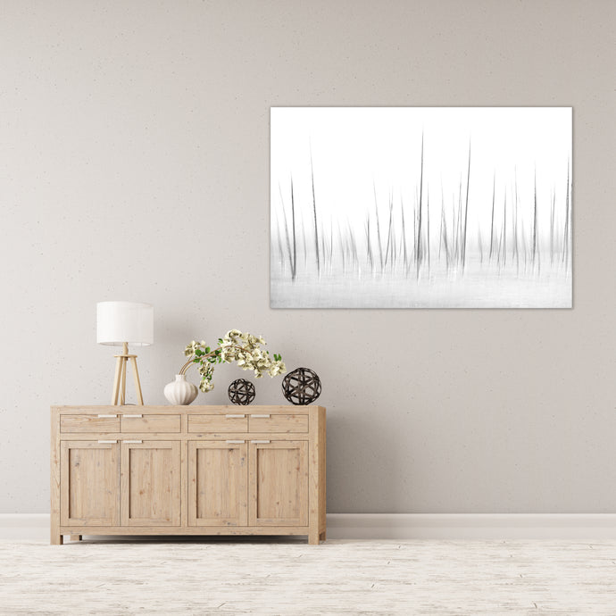 Into the white - Gallery Wrap Canvas w/ COA (Various Sizes)