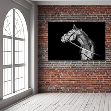Load image into Gallery viewer, Spanish Horse  B&W - Gallery Wrap Canvas w/ COA (Various Sizes)