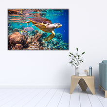 Load image into Gallery viewer, Sea Turtle Swing 3 - Gallery Wrap Canvas w/ COA (Various Sizes)