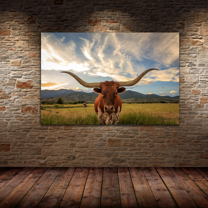 Long Horn Bull - Gallery Wrap Canvas w/ COA (Various Sizes)