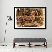 Load image into Gallery viewer, Spanish Horse  - Gallery Wrap Canvas w/ COA (Various Sizes)