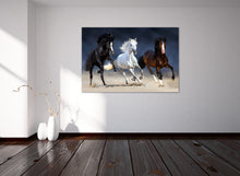 Load image into Gallery viewer, Wild Horse 03 - Gallery Wrap Canvas w/ COA (Various Sizes)