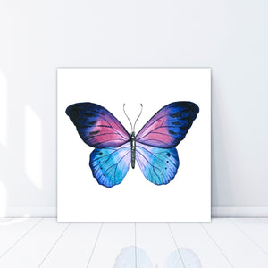 Butterfly  - Gallery Wrap Canvas w/ COA (Various Sizes)