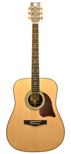 Revival RG-24M Matte Solid Spruce Rosewood Dreadnought Guitar