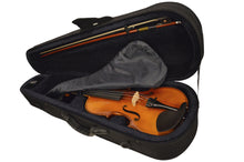 Load image into Gallery viewer, Sandner SV-300P Intermediate Student Violin