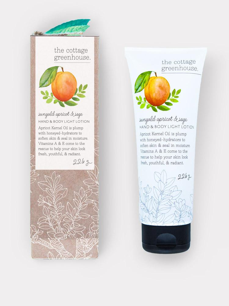 Hand & Body Light Lotion - Sungold Apricot & Sage