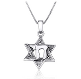 Chai Pendant 925 Sterling Silver Hebrew Six-Pointed Star of David Necklace Chai Pendant Jewish Star Chain 24in.