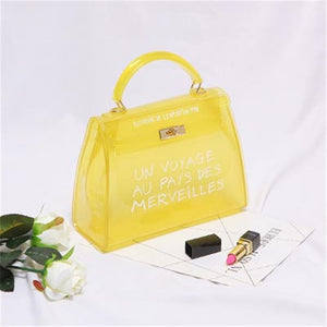 Transparent luxury beach bag
