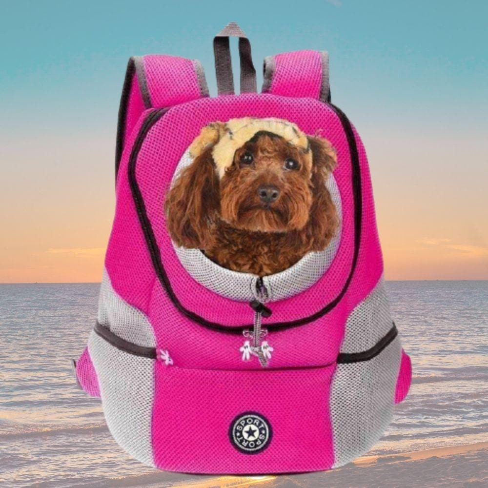 front pouch dog carrier
