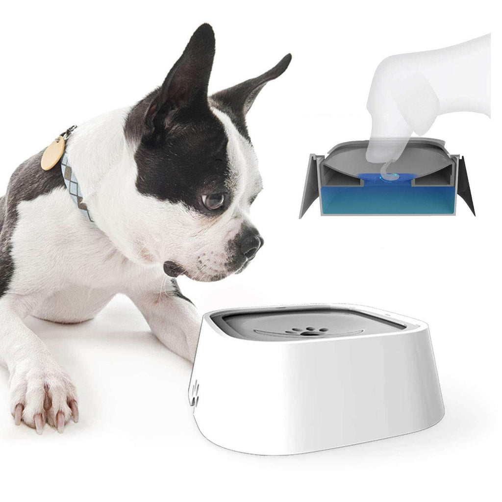 MagicBowl™ Dog Water Bowl