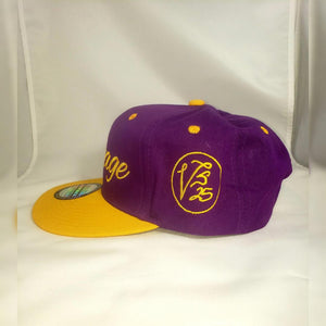 Vintage SnapBack Hat Purple and Gold