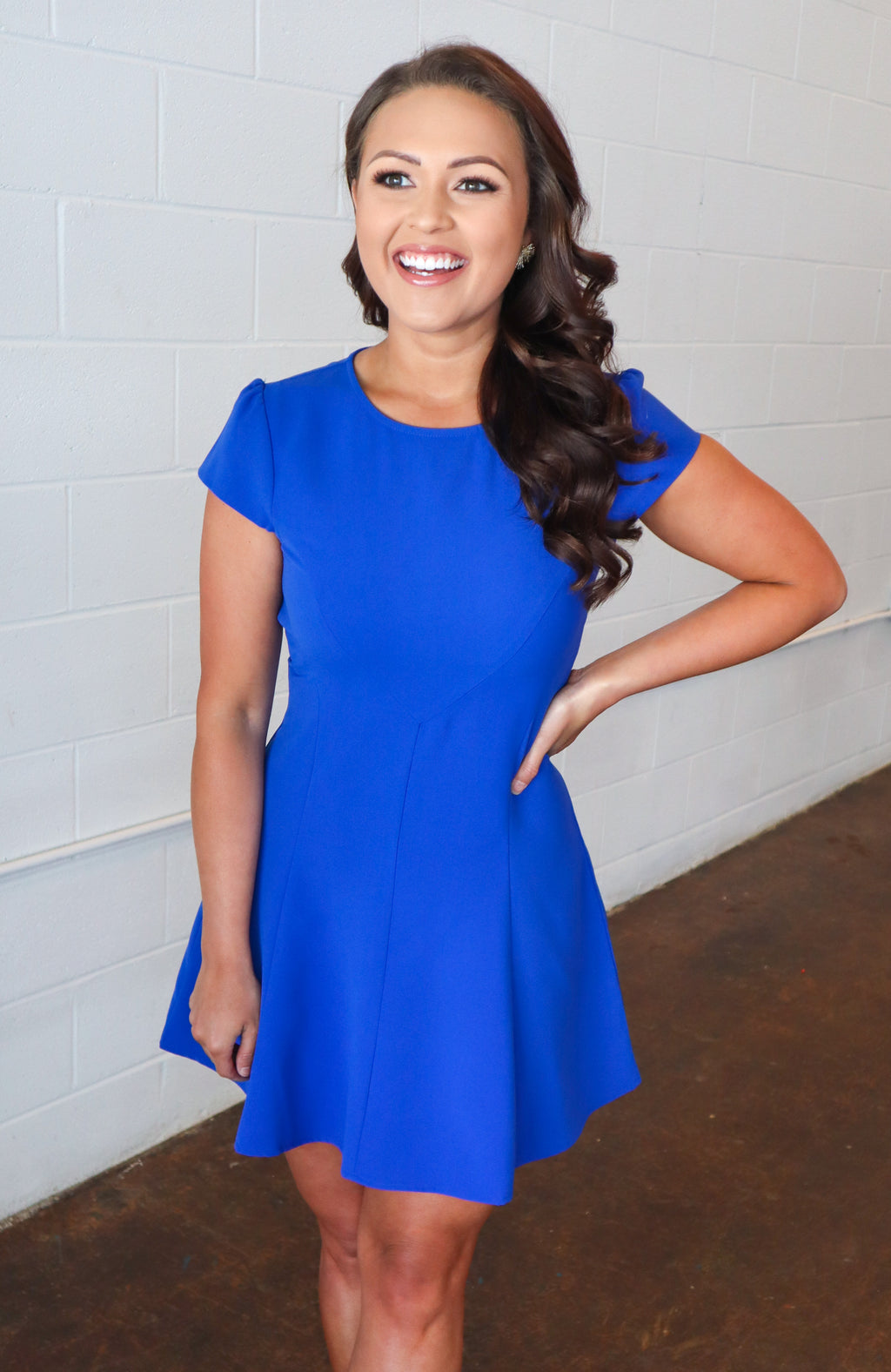 Meet and Greet Blue Skater Dress