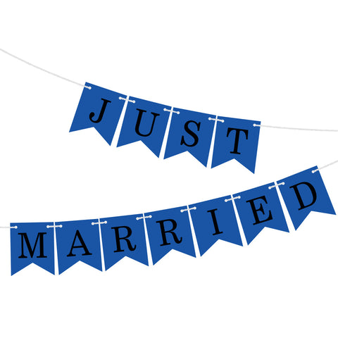 Nicro Just Married Banner Garland