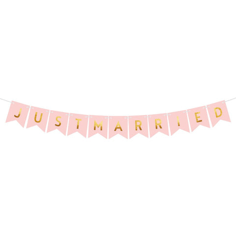 Image of Nicro Just Married Banner Garland