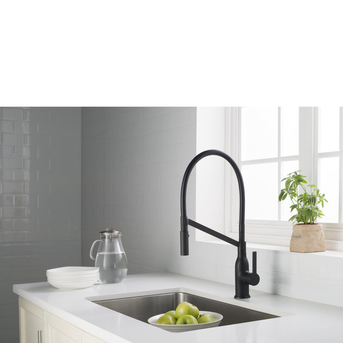 Vallant Kitchen Faucet w/ Spray Head Gooseneck Single Lever Mixer in Matte Black