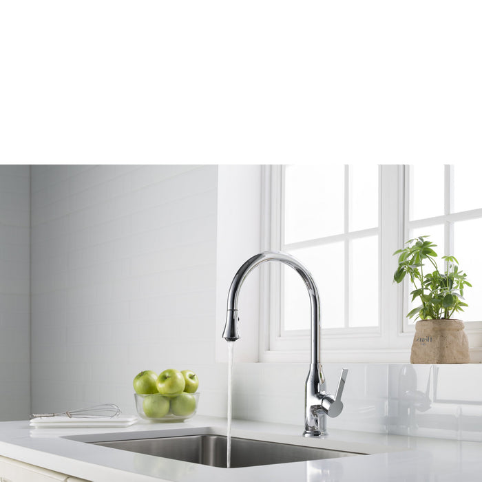 Everton Kitchen Faucet Gooseneck Single Lever Mixer in Chrome