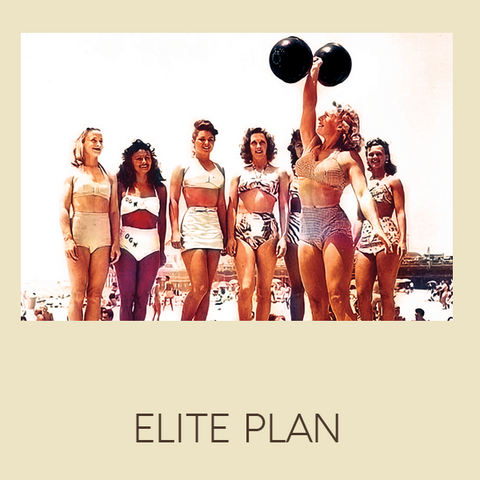 ELITE ATHLETE MAINTAIN MEAL PLAN