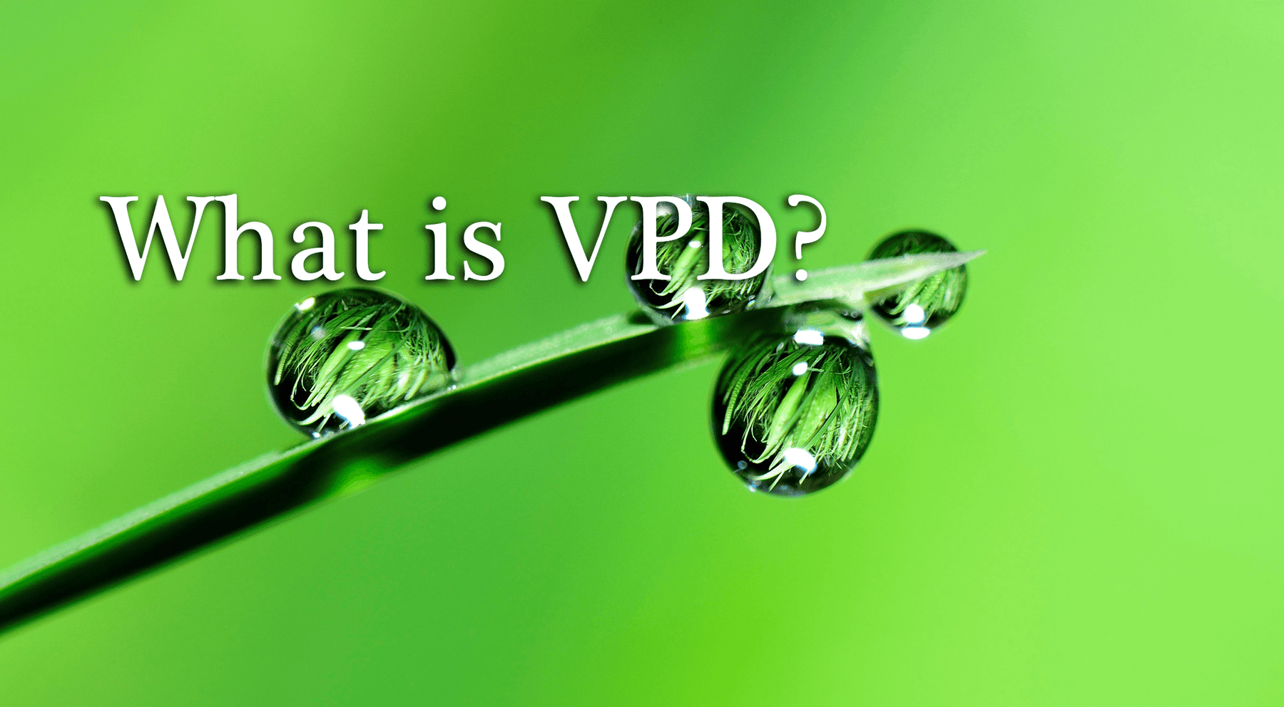 What is VPD? Vapor Pressure Deficit Explained