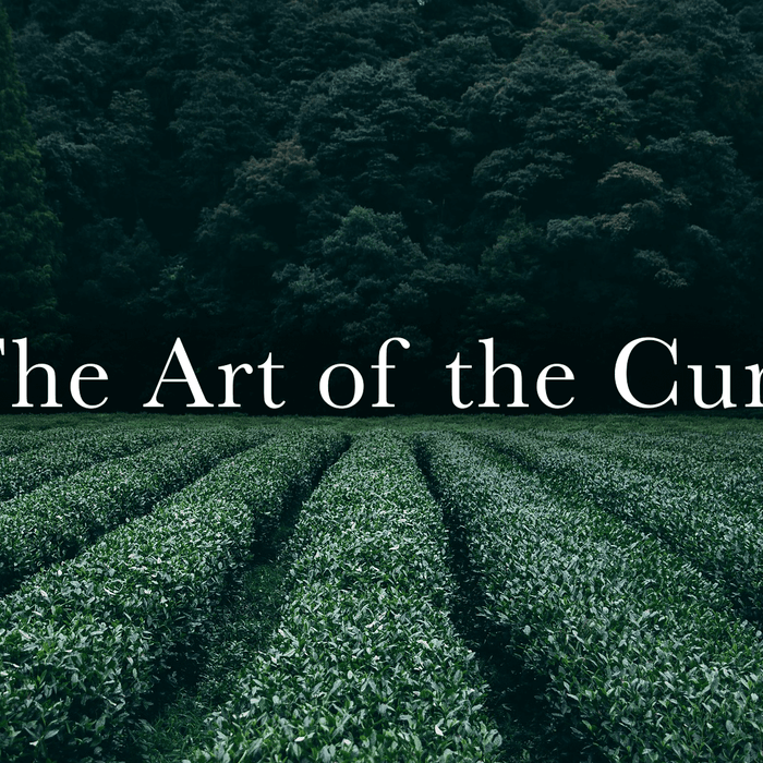 The Art of the Cure: Getting the most out of your harvest