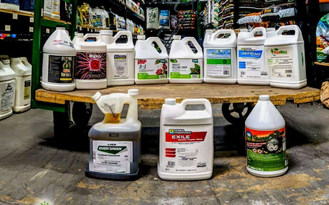 Preventative Pest Control: Top Products