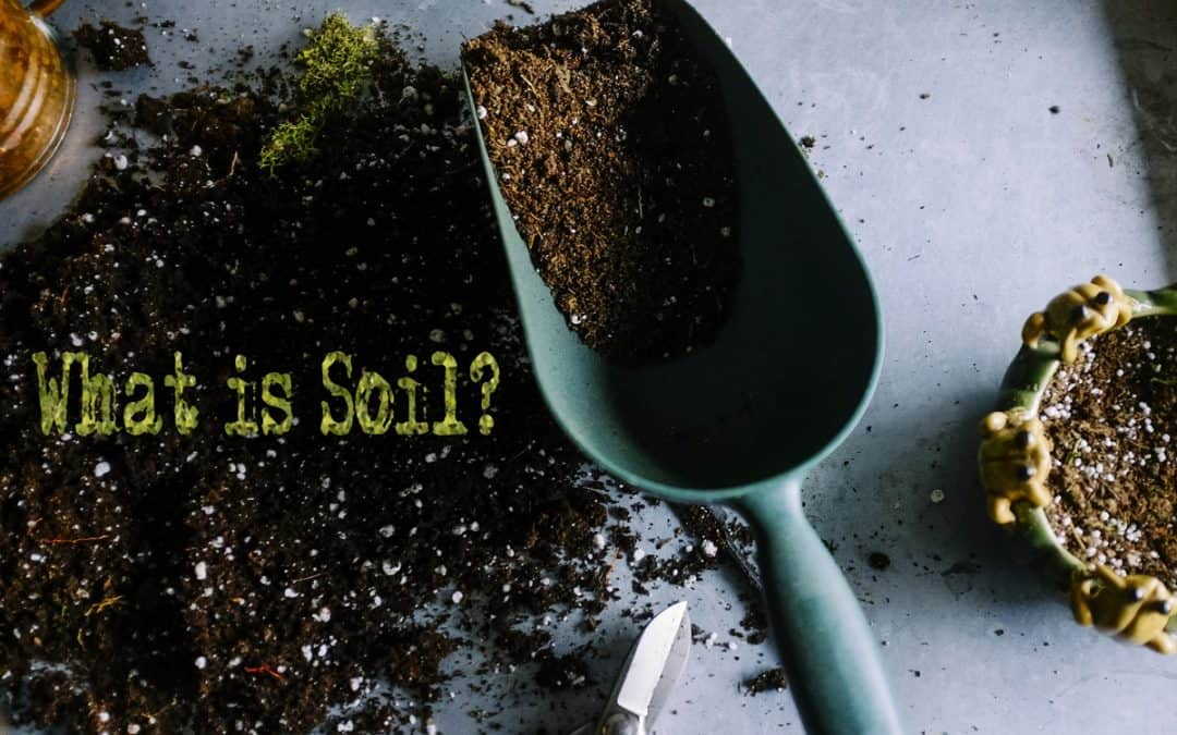 What is Soil: Cultivate Guide