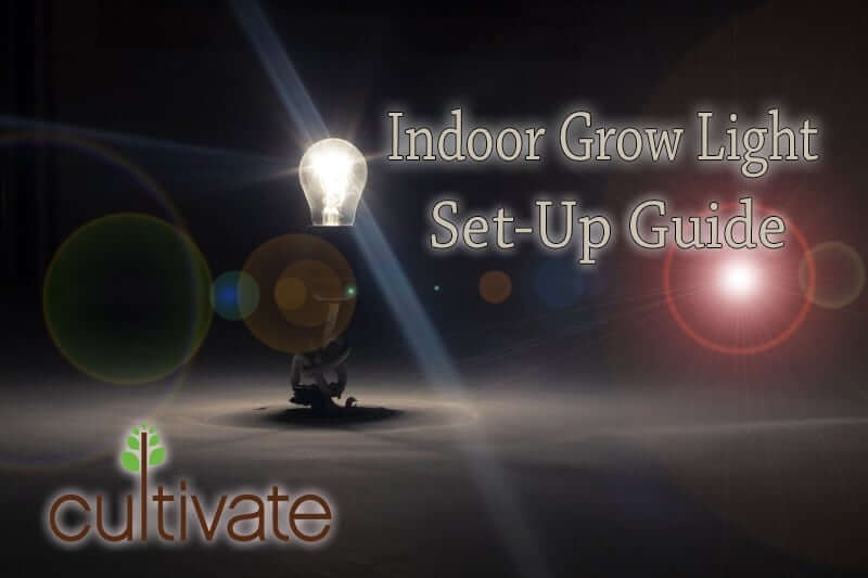Indoor Grow Light Setup Guide