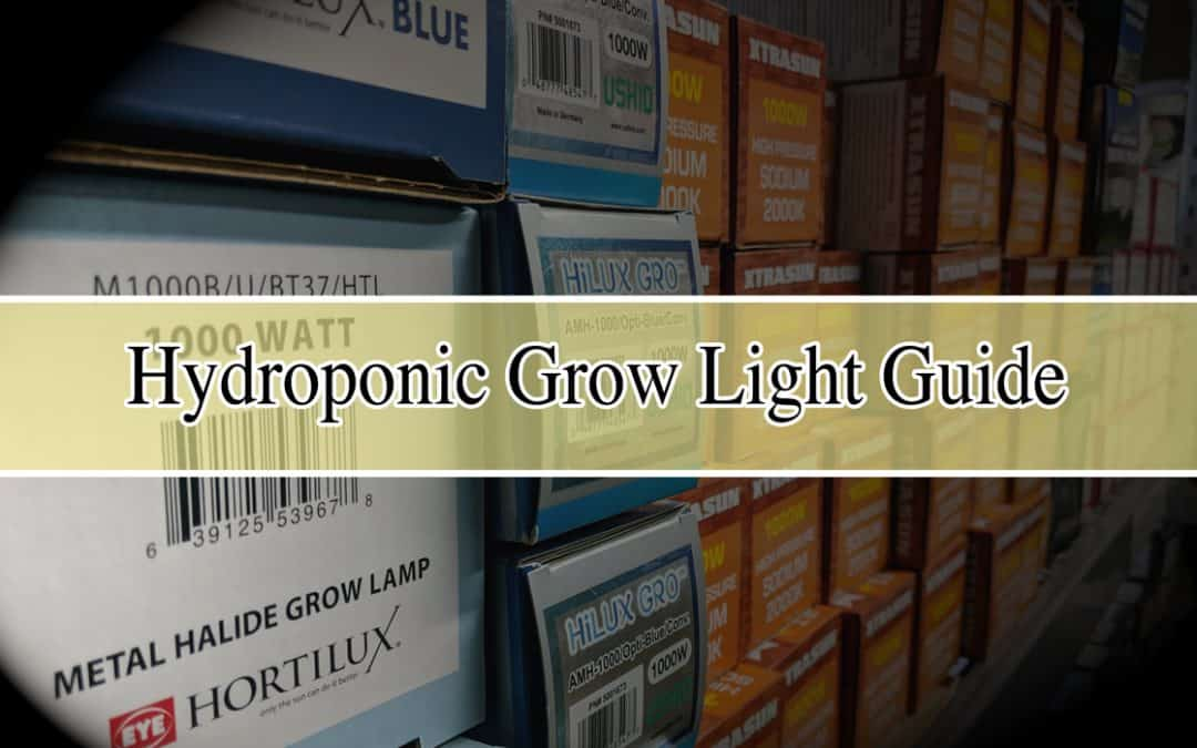 Hydroponic Grow Lights Guide