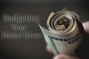Budgeting Your Home Grow