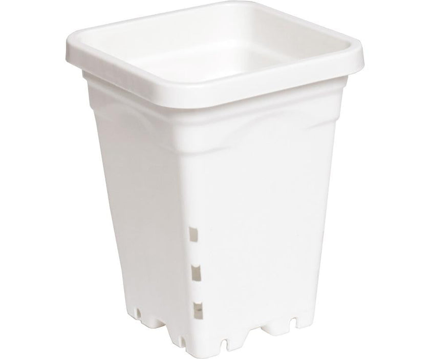 "Active Aqua Square White Pot ( 5"" x 5"" x 7"")"
