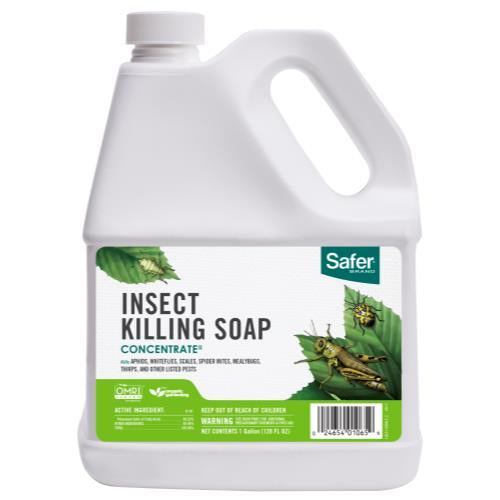 Safer Insect Soap Concentrate