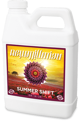 New Millenium Summer Shift