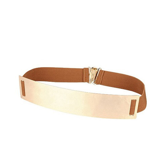 Brown Metallic Belt