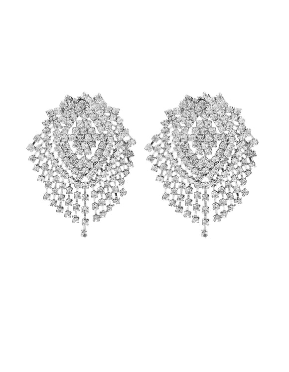 Gleaming Studded Silver Earrings