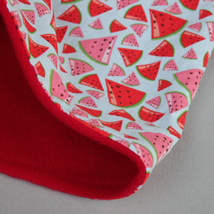 LARGE watermelon snuggle sack. Cuddle pouch for hedgehogs and guinea pigs.